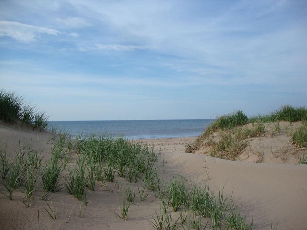 The-Dunes